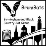 2010-brumbats-logo217